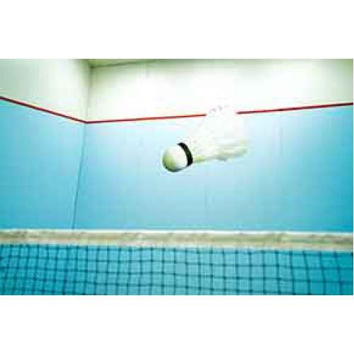 Badminton - Level 2 (7-12 yrs): Sundays 12:50 - 1:35 pm