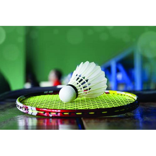 Badminton - Level 3 (10-14 yrs): Saturdays 10:20 - 11:05 am