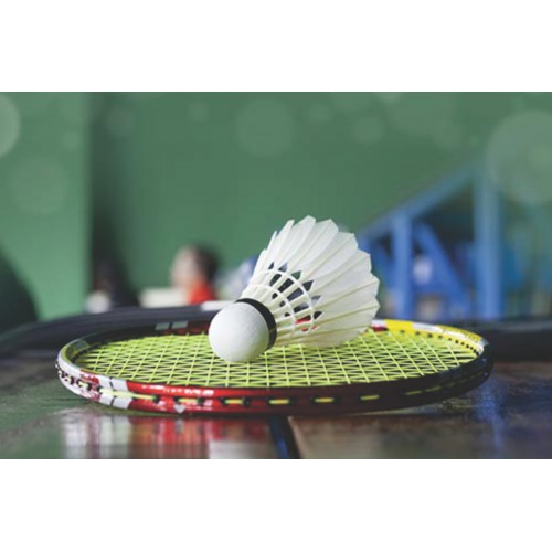 Badminton - Level 3 (10-14 yrs): Sundays 11:00 - 11:45 am
