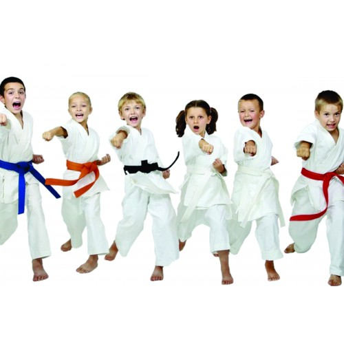 Little Ninjas Karate - Beg (3-4 yrs): Fridays 5:50 - 6:20 pm