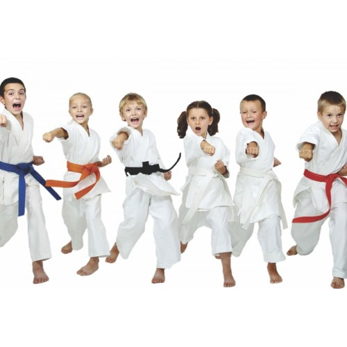 Karate - Champions - Beg (6-11 yrs): Fridays 6:40 - 7:25 pm